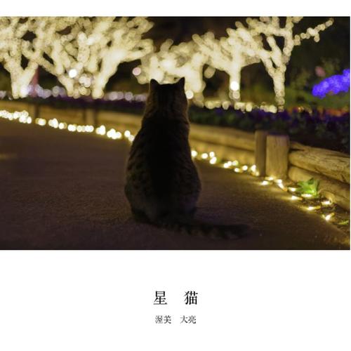 オリジナルフォトブック 星猫