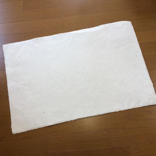 ロクタ紙 10枚