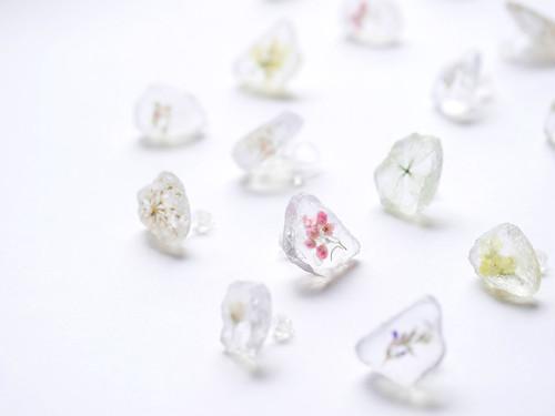sugar candy  - 氷砂糖に閉じ込めたお花のピアス -