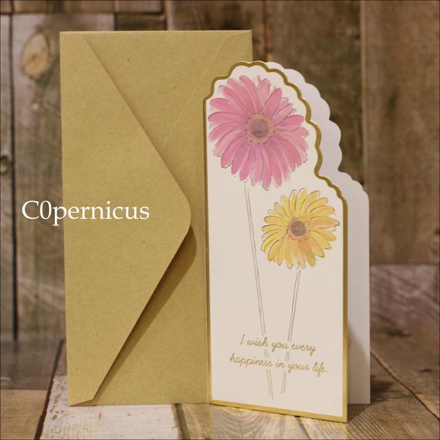 メッセージカード 0315-6(ガーベラ)浜松雑貨屋 C0pernicus  便箋・封筒レターセット