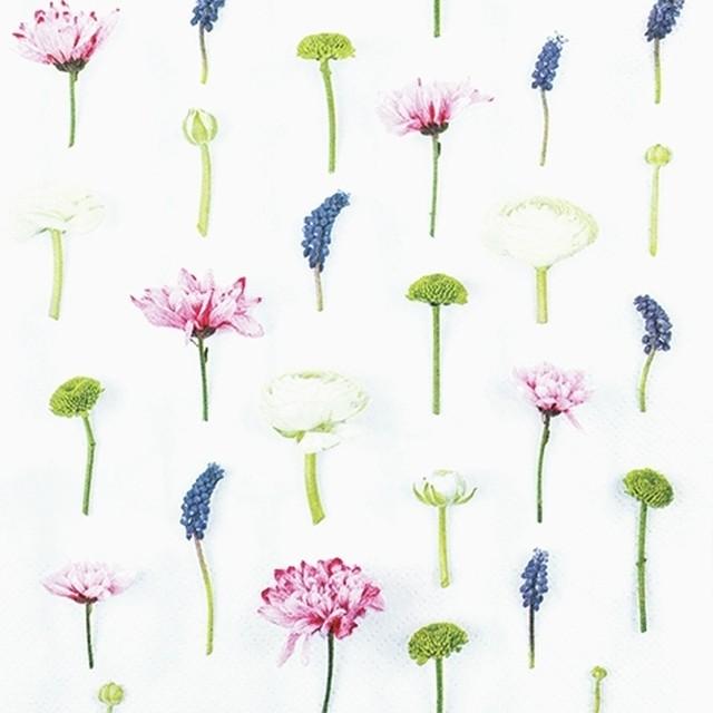 【Home Fashion】バラ売り2枚 ランチサイズ ペーパーナプキン FLOWER COMPOSITION ホワイト
