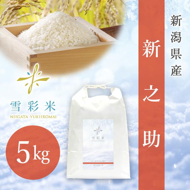 【雪彩米】新潟県産 令和2年産 新之助 5kg