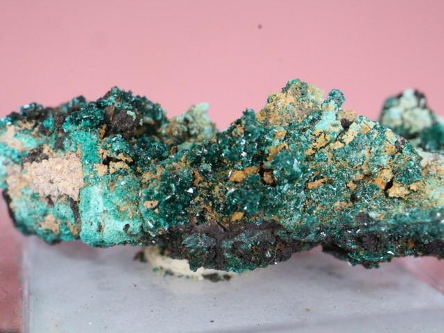 カリフォルニア産 ブロシャン銅鉱 Brochantite ケース入り BRN002 鉱物 原石 天然石 パワーストーン