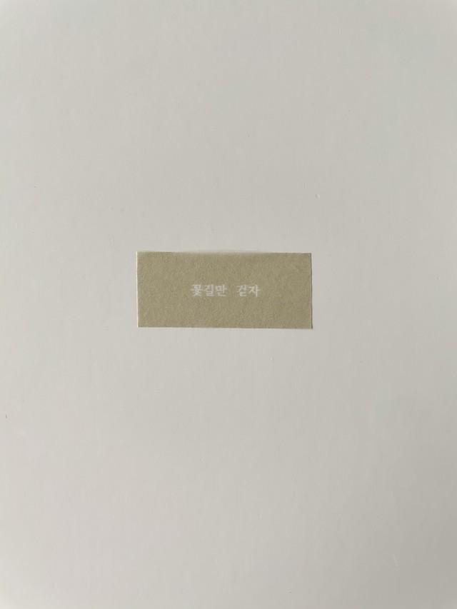 spring masking tape(3 designs)