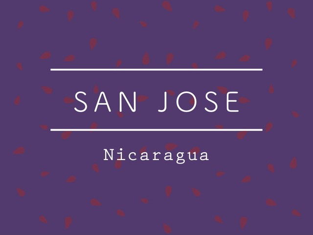 【100g】ニカラグア /  SAN JOSE