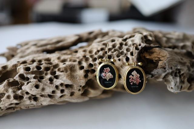 specimen earring