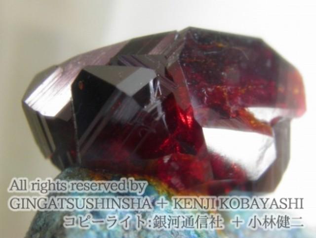 結晶育成キット - 赤色結晶育成キット Red Ladynite - 銀河通信社