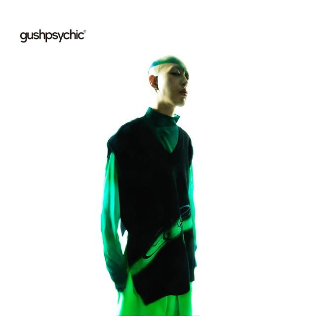 【gushpsychic】Vネックニットベスト