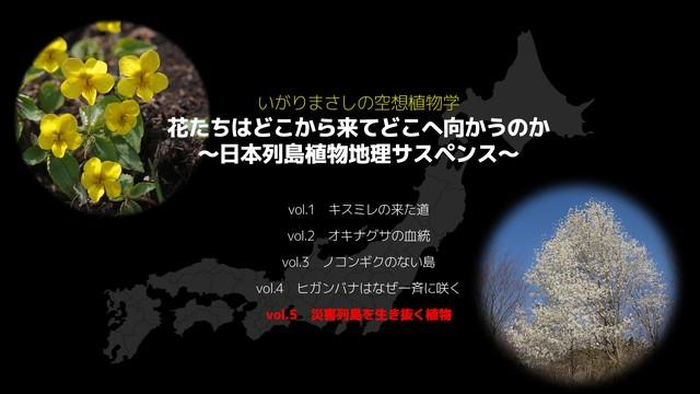 【CD】2枚組 BEST盤 リケーナミュージックの世界【2020年2月1日発売】