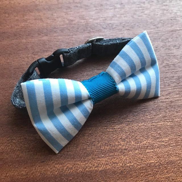 猫 首輪 リボン首輪 ストライプ グログランリボン ブルー