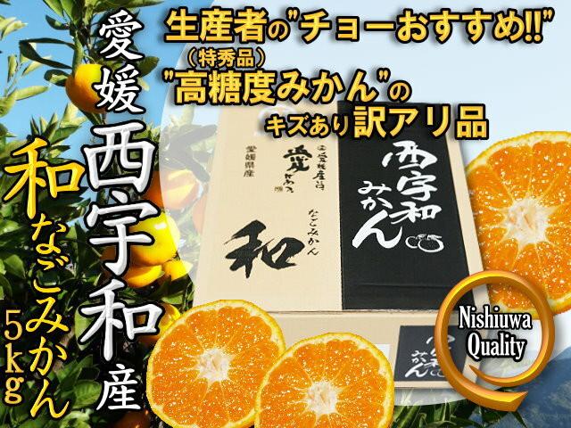 和 なごみかん 2S~Sサイズ 5kg(八協共選)したたる甘さと香ばしい酸味 特秀品と同じ選抜基準 産地直送 - メイン画像