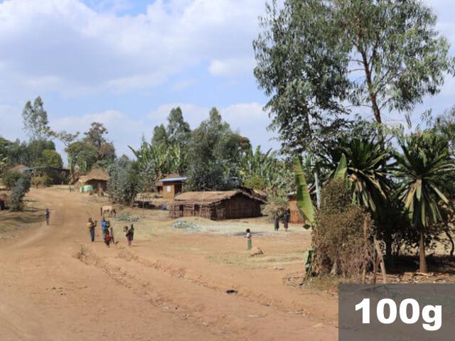 エチオピア | シダモG-2 ウォッシュド デカフェ | コーヒー豆100g