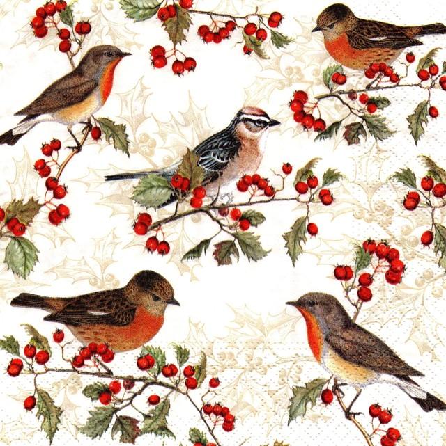 【Nouveau】バラ売り2枚 ランチサイズ ペーパーナプキン BIRDS ON ILEX クリーム