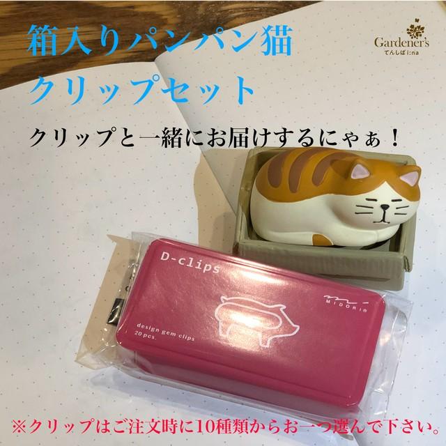 箱入りパンパン猫クリップセット (送料込み)