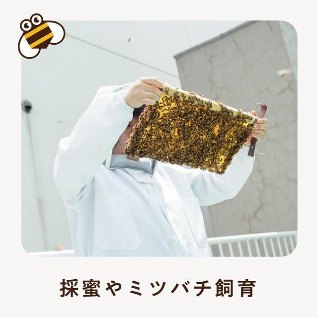 【個人会員】さっぱちCLUB入会