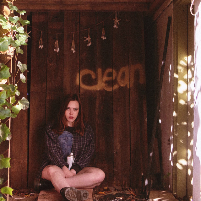 Soccer Mommy / Clean(LP)