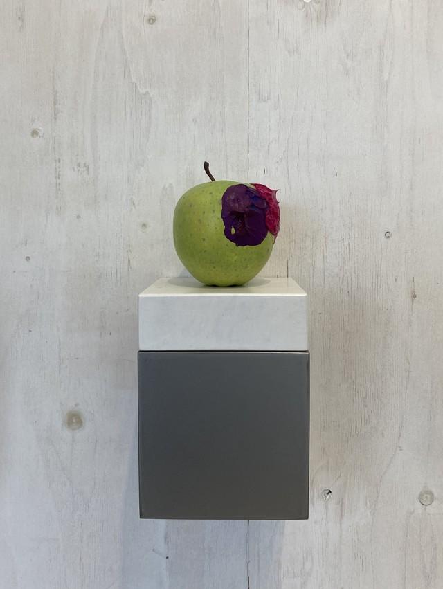 Apple (cobalt violet &  rose madder)