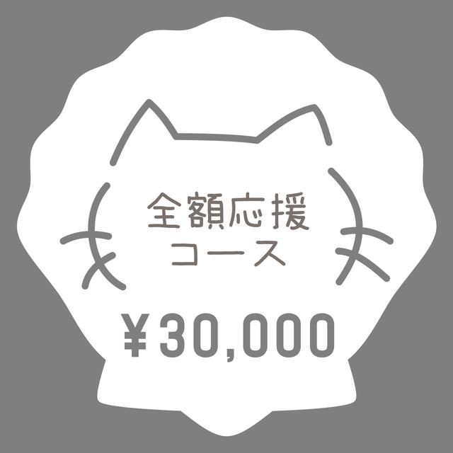 全額応援コース:30,000円