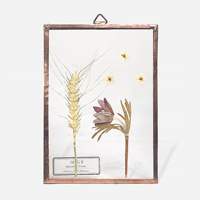 Botanical Frame S011(A_Gold)
