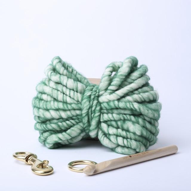 Loopy Mango ドッグリード DIYキット グリーン S