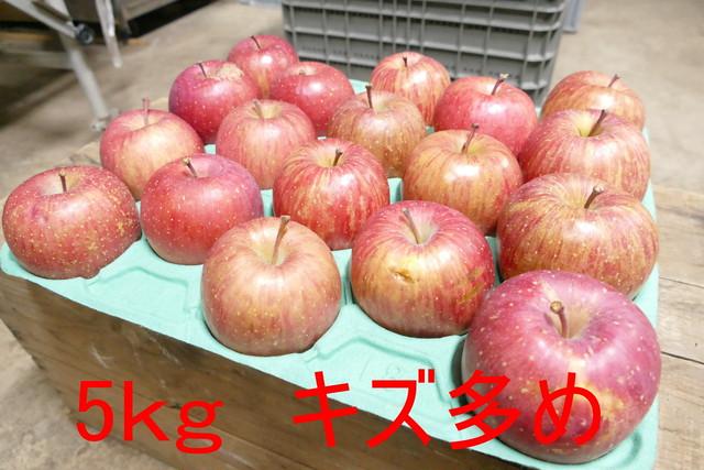 あきた 旬のりんごの詰め合わせ 5kg 家庭用