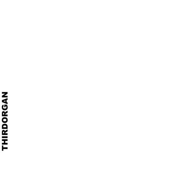 Thirdorgan – Thirdorgan(CD)