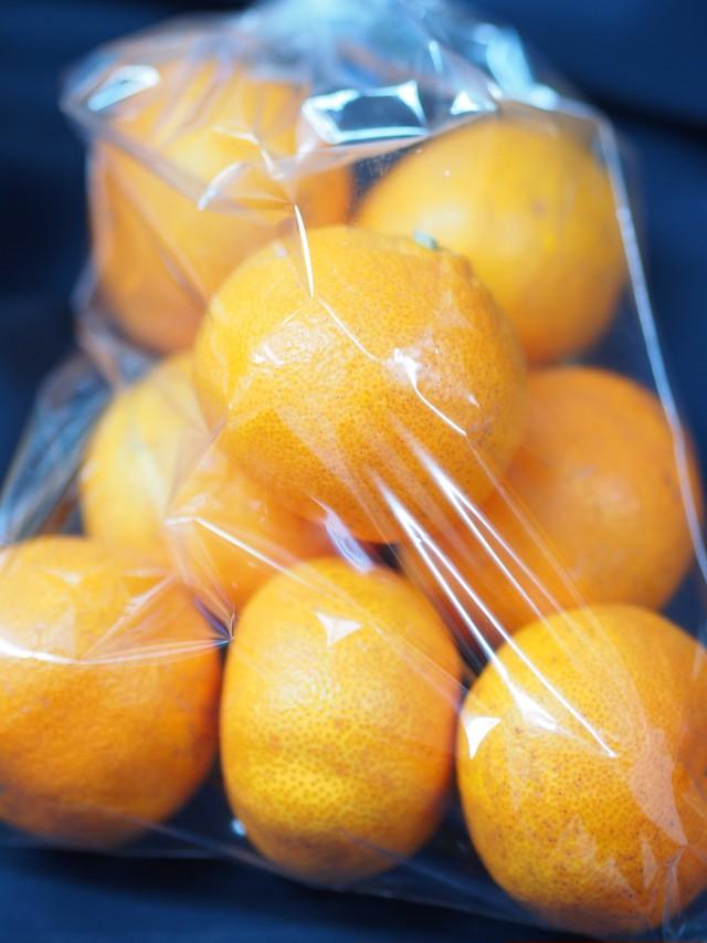 彌榮〜ツクヨミお任せ野菜セット【橙】想定重量2.5kg〜(重量は内容により変動いたします。)