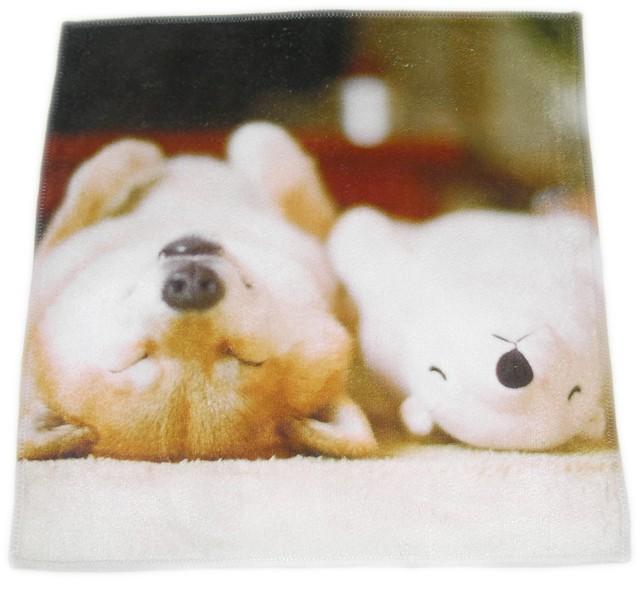 柴犬まる -添い寝まる ハンカチー