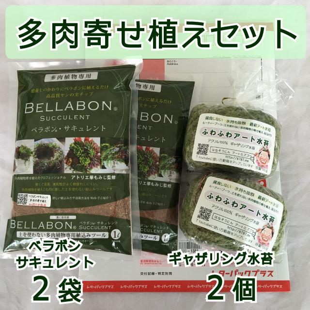 ギャザリング水苔2個&ベラボンサキュレント2袋 セット - メイン画像