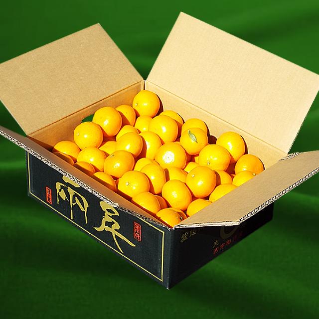 「日の丸みかん 千両」 5kg 秀品 2Sサイズ