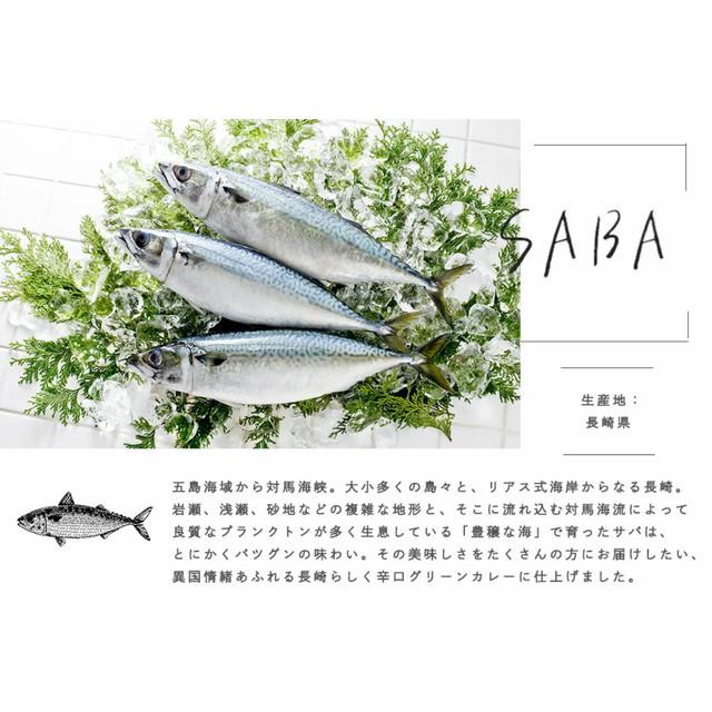 レトルトカレー 長崎の豊穣な海が育てた鯖のぴりっとグリーンカレー3食セット 無添加 ご当地カレー 食品 グルメ カレーセット 鯖カレー お買い得