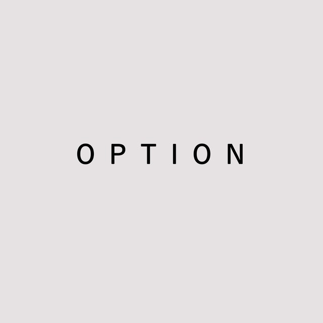 OPTION 《 1,100 yen 》