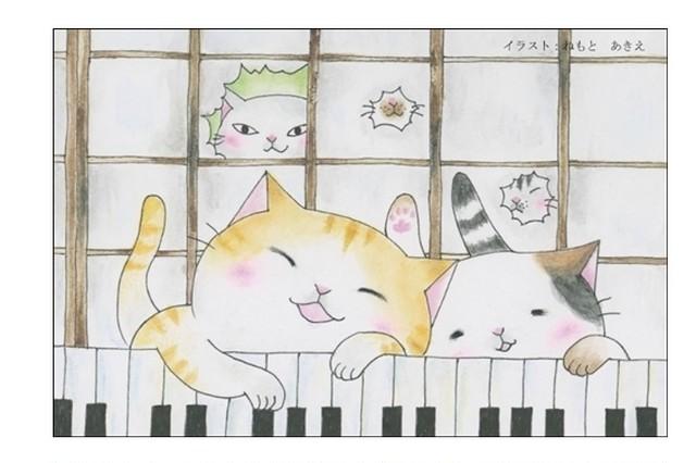 鍵盤猫のポストカード(4枚セット)
