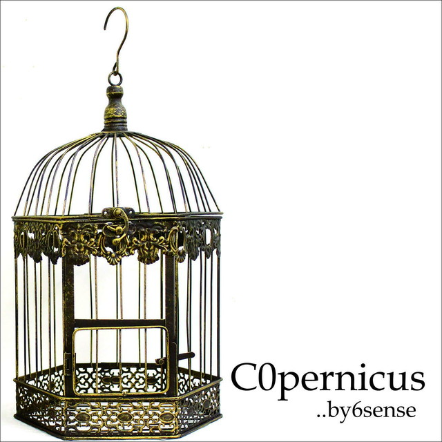 Birdgage バードゲージ・鳥かご 浜松雑貨屋 C0pernicus