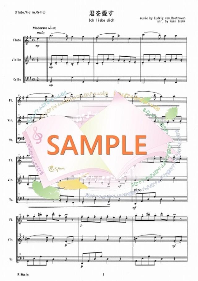 FVC010 君を愛す/ベートーヴェン:管弦楽三重奏(Flute,Violin,Cello)