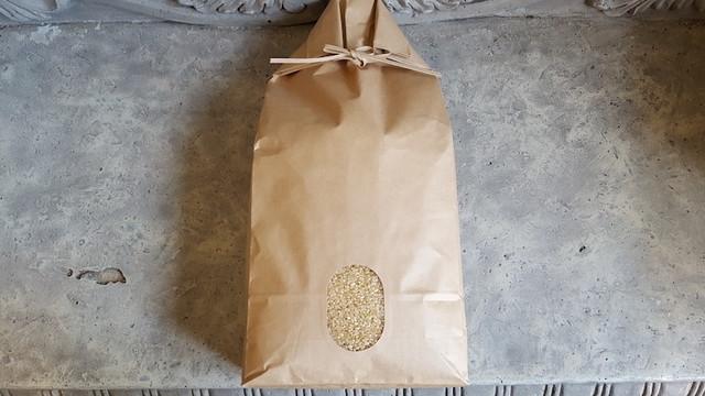 玄米5kg(R1年度産新米)
