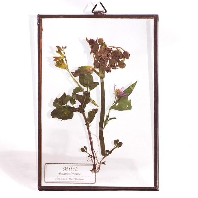 Botanical Frame S002 - Copper