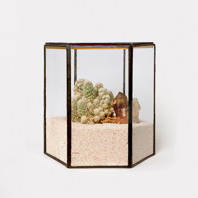 《 Assort 》Hexagonal Terrarium - black