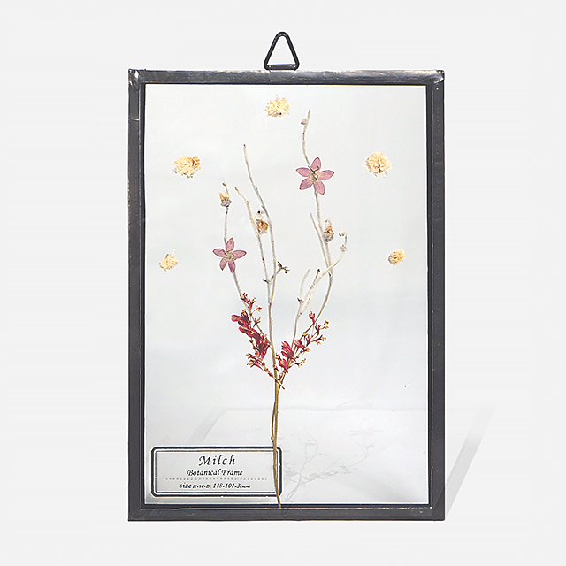 Botanical Frame S005(A_Black)