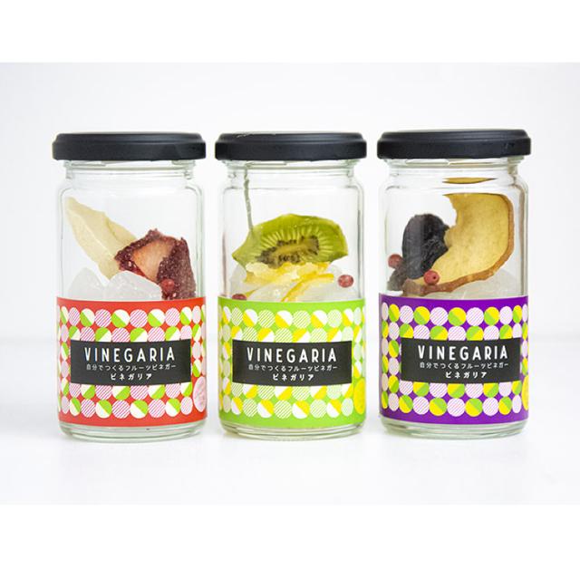 自分で作るフルーツビネガー VINEGARIA(ビネガリア)3本セット【箱付き】