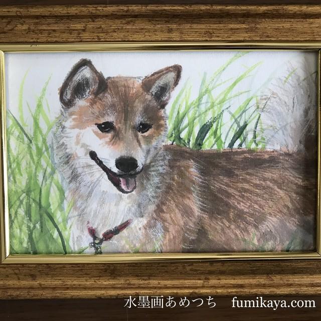 ハガキ〜A5サイズ 動物さんの肖像画(簡易額付き)