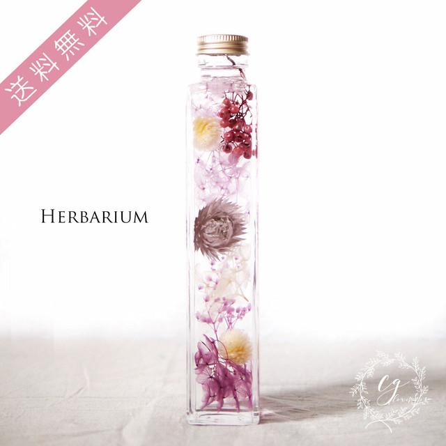 ハーバリウム hh-1901