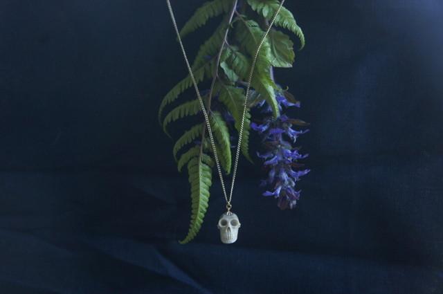 鹿角製小さい頭蓋骨「朝と夕べのメメント・モリ」ネックレス【D】