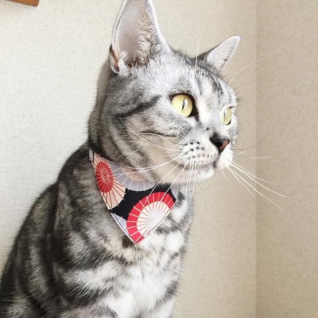 【番傘柄】猫用バンダナ風首輪/セーフティバックル