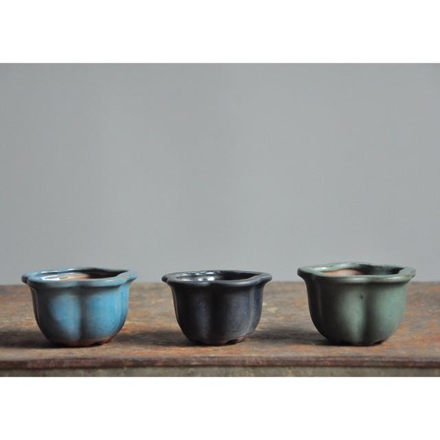【 盆栽鉢 (m) - 浅葱色 - 】小品盆栽 / 植木鉢 / vintage / bonsai / japan