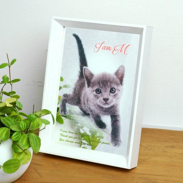 写真からつくる!フォトフレーム パブミラー 猫・犬 長方形