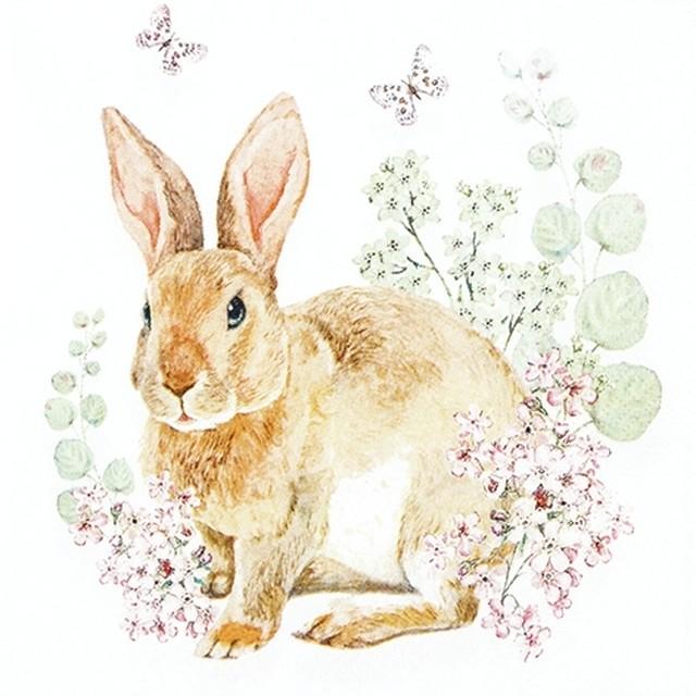 予約商品 2020春夏【Home Fashion】バラ売り2枚 ランチサイズ ペーパーナプキン ROSI RABBIT ホワイト