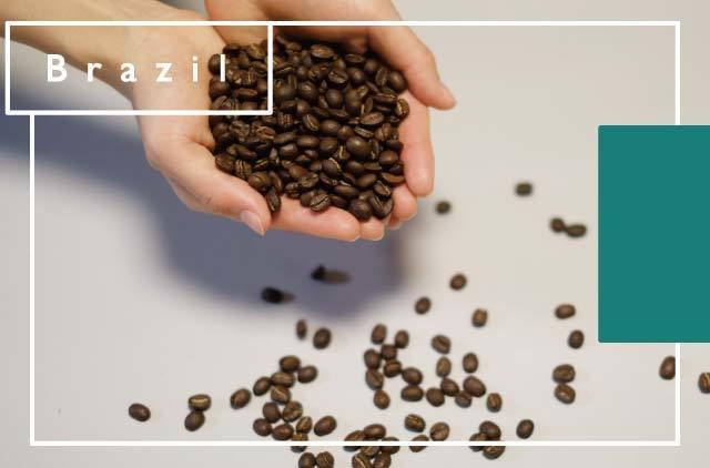 [ブラジル] 水素焙煎珈琲豆