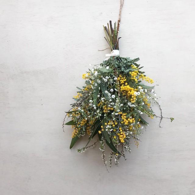 Dryflower-Swag Mimosa