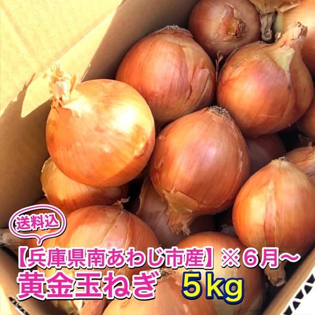 【兵庫県南あわじ市産】黄金玉ねぎ※6月上旬〜 5kg